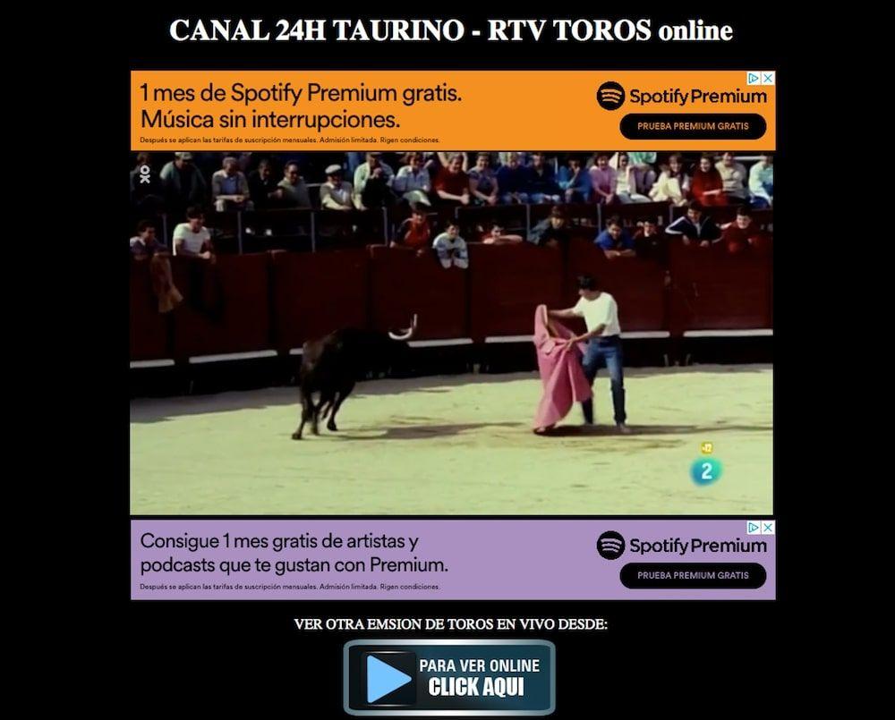 RTV Toros TV